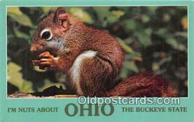 gre000059 - Ohio, USA Postcards Post Cards Old Vintage Antique