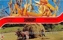 gre000185 - Sunbury Pennsylvania, USA Postcards Post Cards Old Vintage Antique