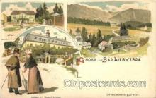 gsa001082 - Gruss Aus Bad Liebwerda Postcard Post Card