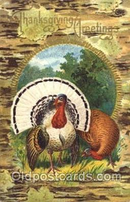 hol060075 - Thanksgiving Postcard Postcards