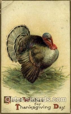 hol060254 - Artist Ellen Clapsaddle, Thanksgiving Postcard Post Cards