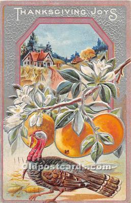 hol061696 - Thanksgiving Old Vintage Antique Postcard Post Card