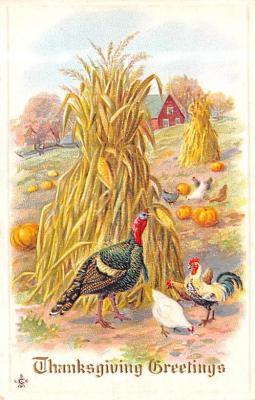 hol064319 - Thanksgiving Postcard Old Vintage Antique Post Card