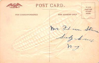 hol064703 - Thanksgiving Postcard Old Vintage Antique Post Card  back