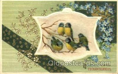 hol070044 - St. Saint Patrick's Day Postcard Postcards