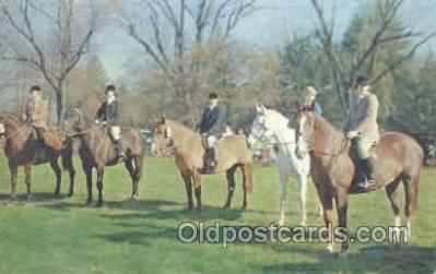hor001200 - Horse Show and Fox Hunt Horse Postcard Postcards