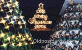 hol050291 - Christmas Postcard, Post Card Old Vintage Antique Carte, Postal Postal