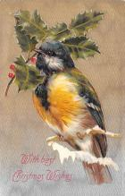hol051635 - Christmas Postcard Old Vintage Antique Post Card