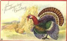 hol060038 - Thanksgiving Postcard Postcards