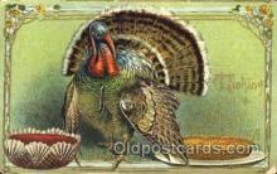hol060069 - Thanksgiving Postcard Postcards