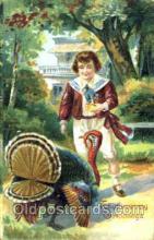 hol060090 - Thanksgiving Postcard Postcards