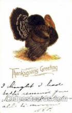 hol060100 - Thanksgiving Postcard Postcards