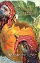 hol060104 - Thanksgiving Postcard Postcards