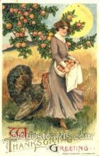 hol060108 - Samuel Schmucker Thanksgiving Postcard Postcards