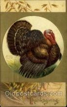 hol060303 - Artist Ellen Clapsaddle, Thanksgiving Postcards Post Card