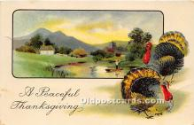 hol061179 - Thanksgiving Old Vintage Antique Postcard Post Card