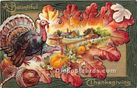 hol061377 - Thanksgiving Old Vintage Antique Postcard Post Card