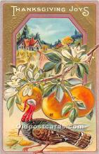 hol061694 - Thanksgiving Old Vintage Antique Postcard Post Card
