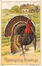 hol061703 - Thanksgiving Old Vintage Antique Postcard Post Card