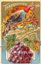 hol061754 - Thanksgiving Old Vintage Antique Postcard Post Card