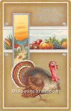 hol061792 - Thanksgiving Old Vintage Antique Postcard Post Card