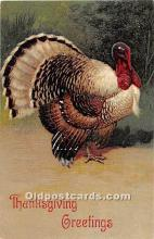 hol061862 - Thanksgiving Old Vintage Antique Postcard Post Card