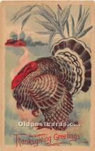 hol061870 - Thanksgiving Old Vintage Antique Postcard Post Card