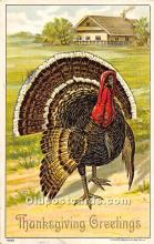 hol061894 - Thanksgiving Old Vintage Antique Postcard Post Card