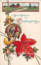 hol062026 - Thanksgiving Old Vintage Antique Postcard Post Card