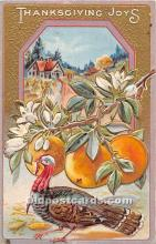 hol062053 - Thanksgiving Old Vintage Antique Postcard Post Card