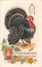 hol062062 - Thanksgiving Old Vintage Antique Postcard Post Card