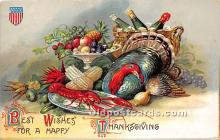 hol063006 - Thanksgiving Greeting Postcard