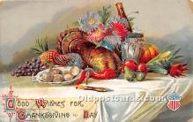 hol063009 - Thanksgiving Greeting Postcard