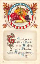 hol063063 - Thanksgiving Greeting Postcard