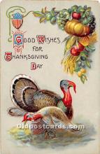 hol063065 - Thanksgiving Greeting Postcard