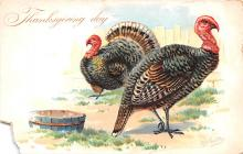 hol064089 - Thanksgiving Postcard Old Vintage Antique Post Card