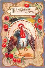 hol064125 - Thanksgiving Postcard Old Vintage Antique Post Card