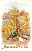 hol064319 - Thanksgiving Postcard Old Vintage Antique Post Card
