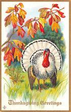 hol064353 - Thanksgiving Postcard Old Vintage Antique Post Card