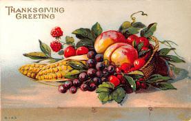 hol064373 - Thanksgiving Postcard Old Vintage Antique Post Card