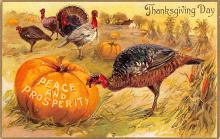 hol064471 - Thanksgiving Postcard Old Vintage Antique Post Card