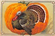 hol064495 - Thanksgiving Postcard Old Vintage Antique Post Card
