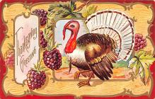 hol064577 - Thanksgiving Postcard Old Vintage Antique Post Card
