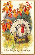 hol064587 - Thanksgiving Postcard Old Vintage Antique Post Card