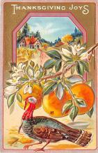 hol064593 - Thanksgiving Postcard Old Vintage Antique Post Card