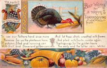 hol064625 - Thanksgiving Postcard Old Vintage Antique Post Card