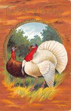 hol064781 - Thanksgiving Postcard Old Vintage Antique Post Card