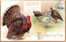 hol064803 - Thanksgiving Postcard Old Vintage Antique Post Card