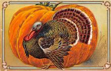 hol064819 - Thanksgiving Postcard Old Vintage Antique Post Card