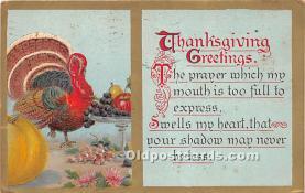 hol065107 - Thanksgiving Greeting Postcard